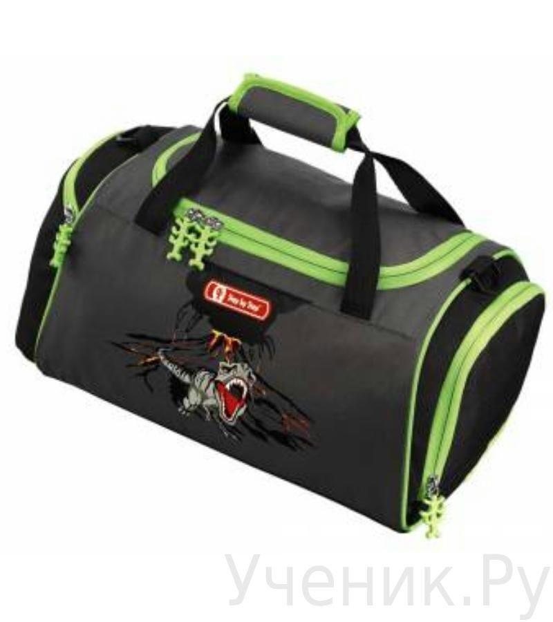 """Спортивная сумка Hama (Хама) """"T-REX"""" Hama (Германия) 129100"""