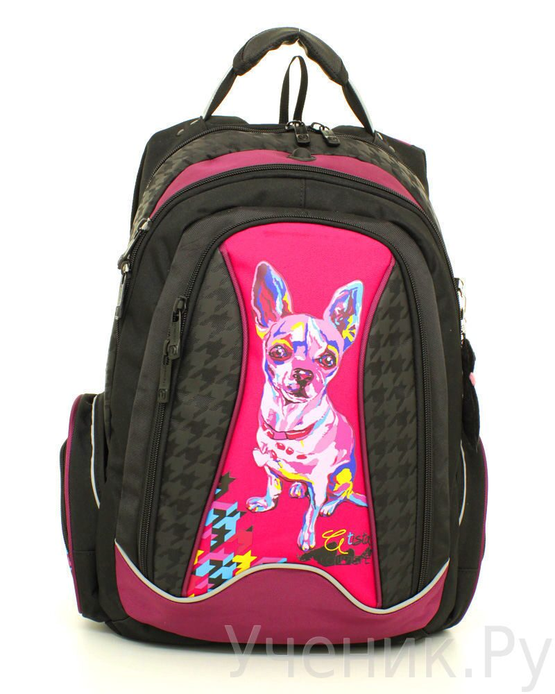 """Школьный рюкзак """"Steiner"""" Doggy Fashion 12-252-9"""