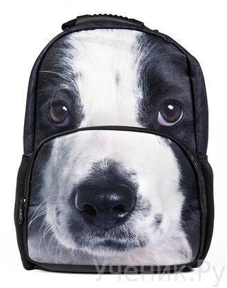 """Школьный рюкзак Hatber модель Trend Line """"Puppy"""" NR_00049"""